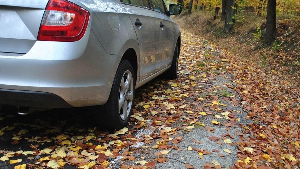 Automobile prenant un virage en automne