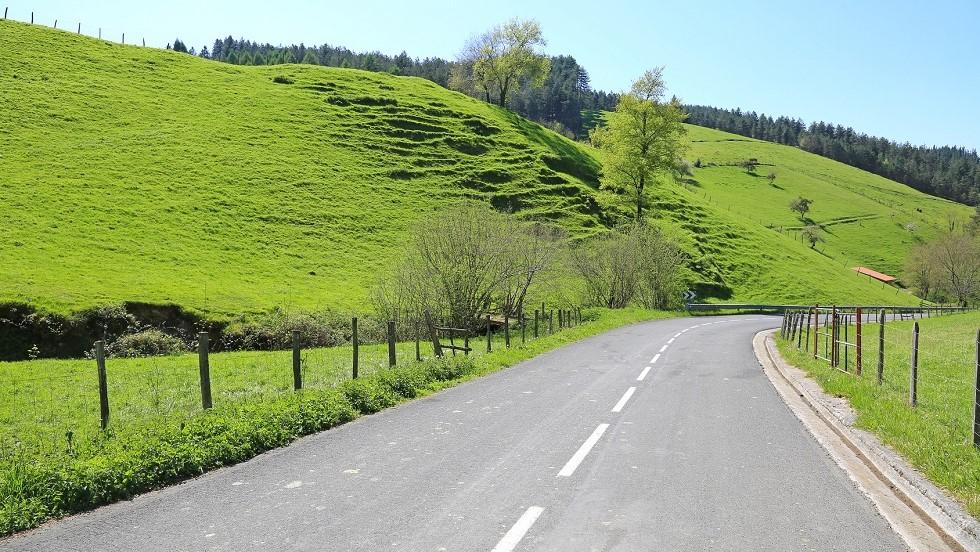 Route de campagne et verdure