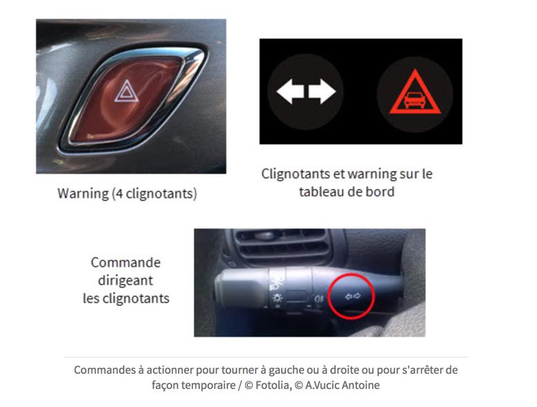 Commandes de voiture : warning et clignotants